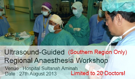 Ultrasound-Guided Regional Anaesthesia Workshop 2013. Click here to view more . . .
